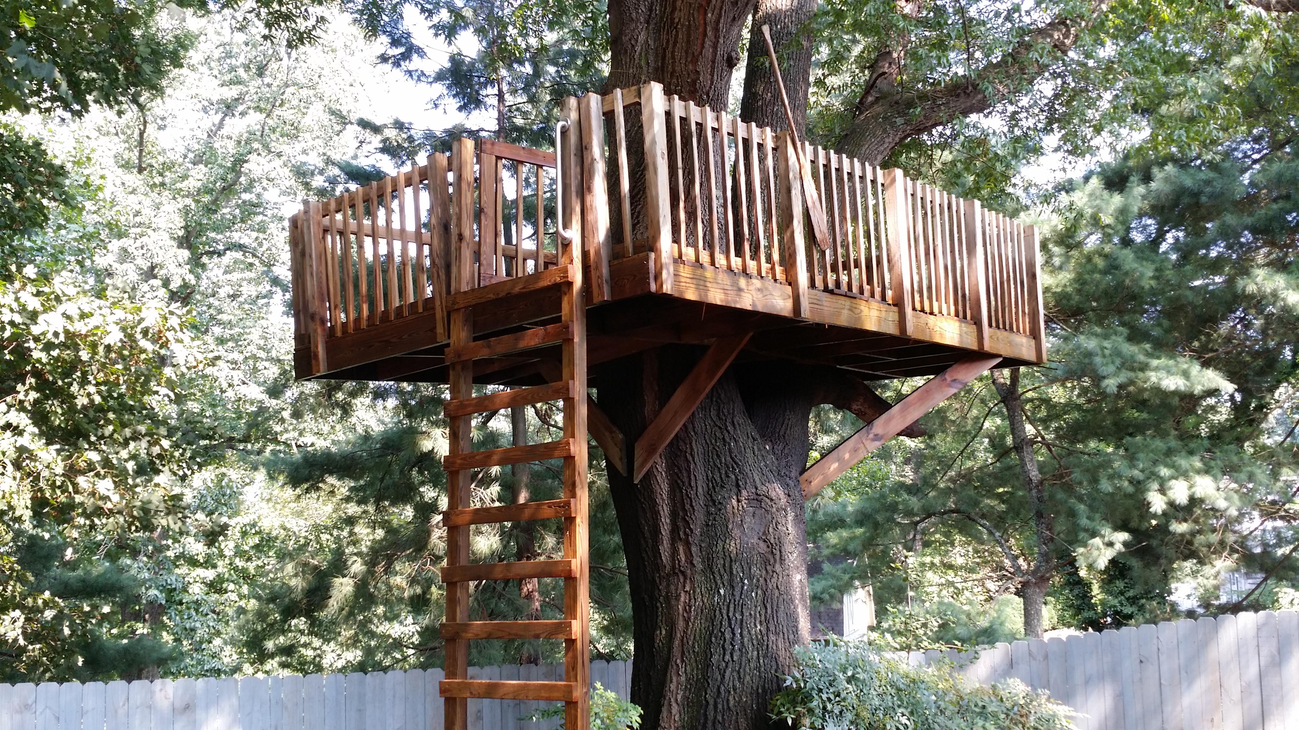 Tree House Pressure Washing