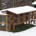 Custom Built Chicken House